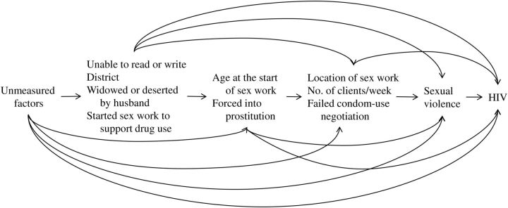 Causal relationships between forced prostitution, age at the start of sex work, sexual violence, and human immunodeficiency virus (HIV) infection among 1,814 adult female sex workers in Karnataka, India, 2005–2006.